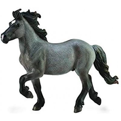 COLLECTA arklys mėlynasis Icelandic Stallion (XL), 88826